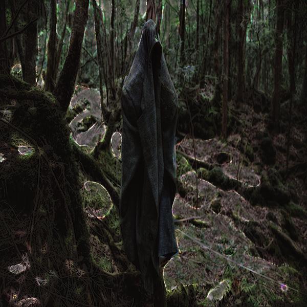 aokigaharajacket